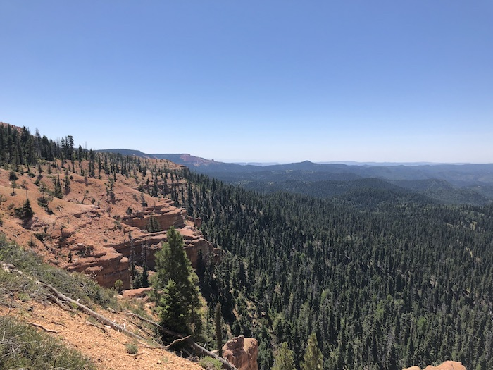 Experience Dixie National Forest in Utah